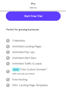 image of leadpages profesional plan